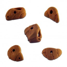 "Climbing holds set ""Naturalis"""